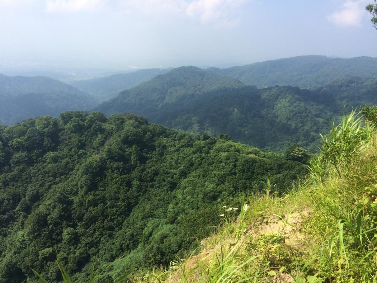 盛夏の里山〜長岡東山
