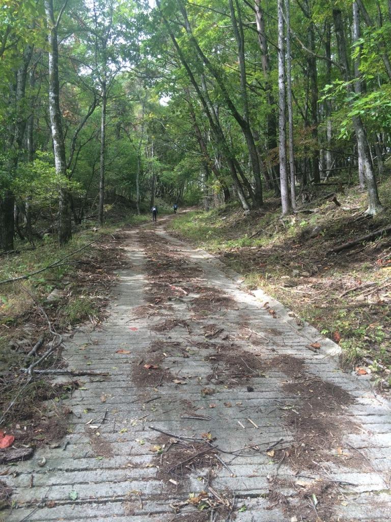 最初の登り。ほんの一部だけ塗装された急勾配の林道。