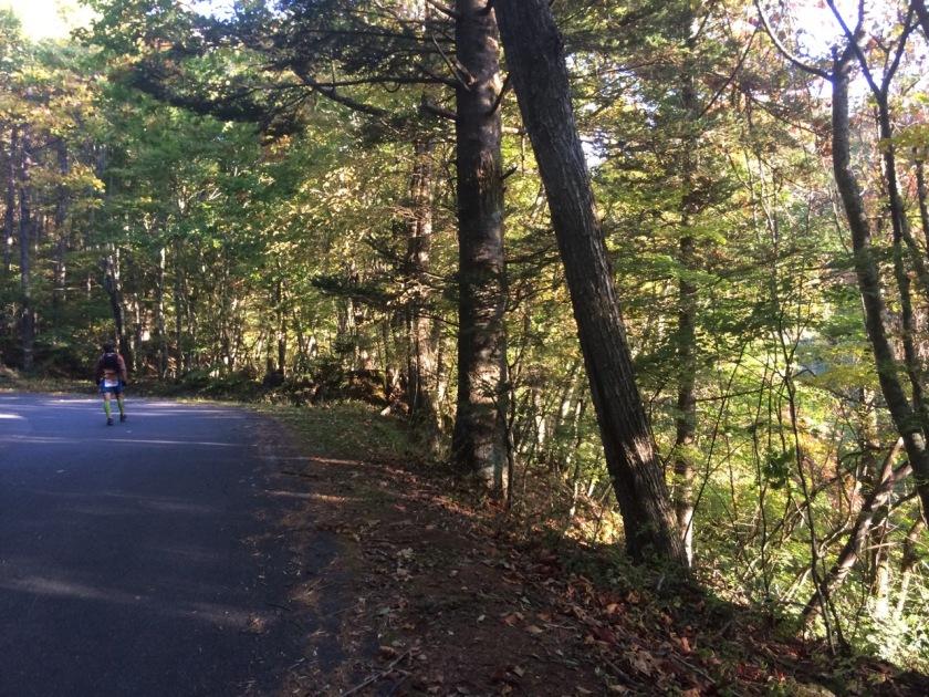 林道が終わった後のロード。紅葉が美しい。