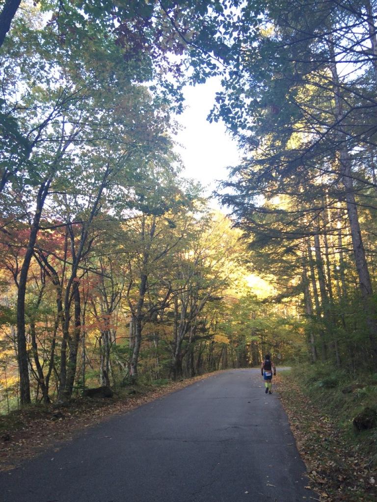 さらにロード。紅葉が美しい。